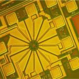 芯片检测显微图